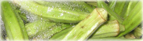 Fresh Okra! https://manfuel.wordpress.com