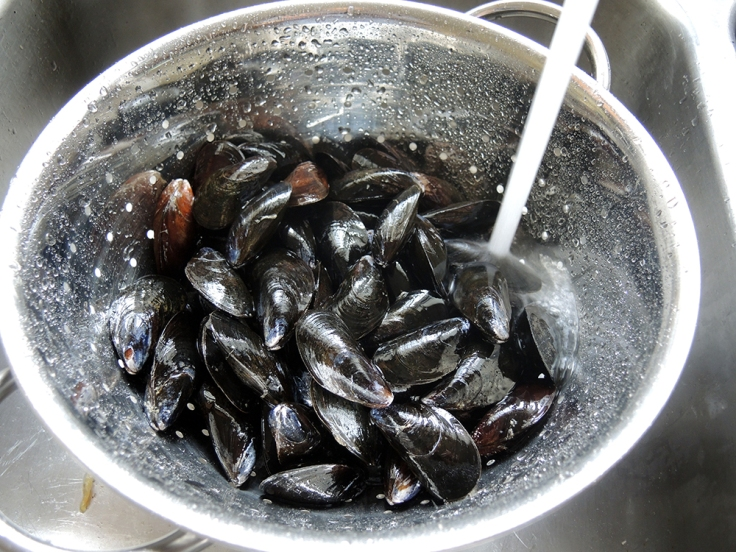Washing Mussels Before Steaming