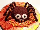 Guest Post: Creepy Chocolate Spider Cake