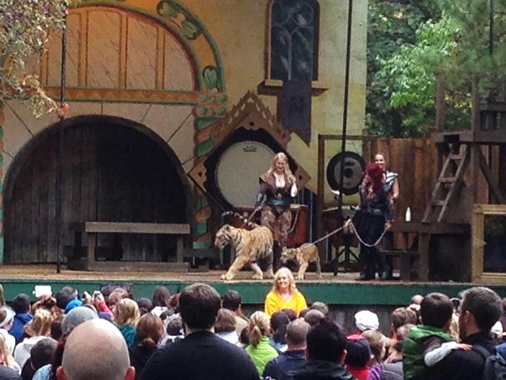 King Richard's Faire - Tiger Show