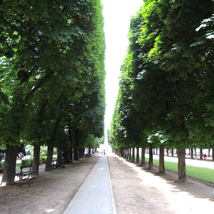 Pathway from the Main Entrance of Luxembourg Garden