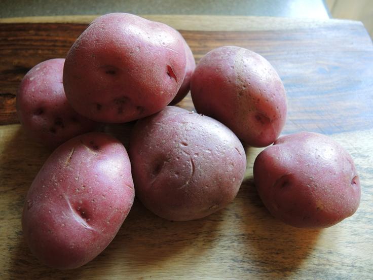 Man Fuel - a food blog - Red Potatoes