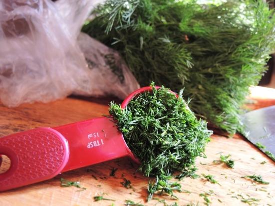 Man Fuel - food blog -Diced Fresh Dill