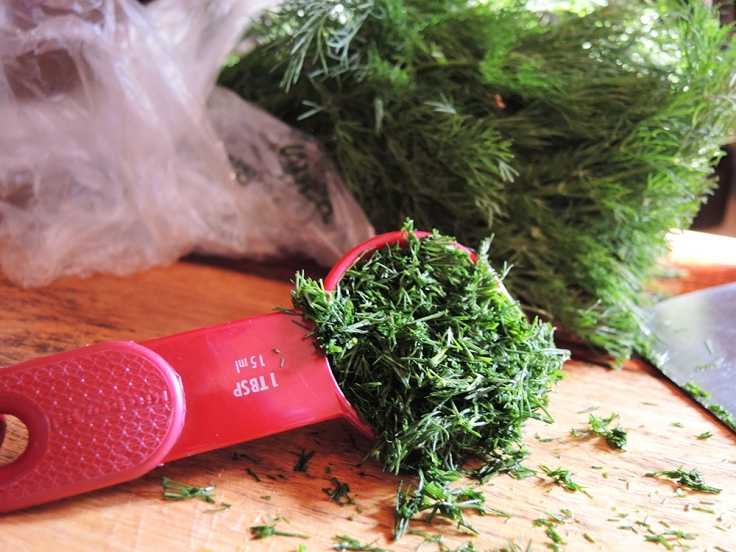 Man Fuel - food blog -Diced Fresh Dill