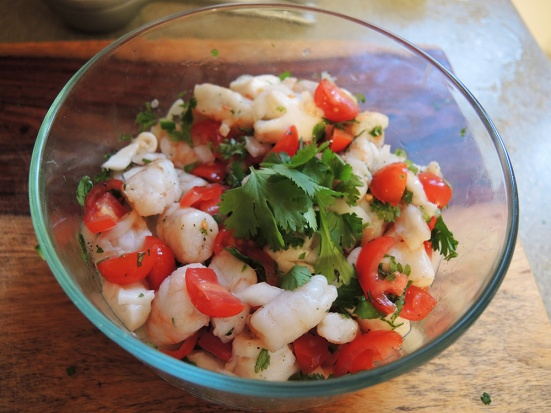 Man Fuel - food blog - Shrimp and Scallop Ceviche