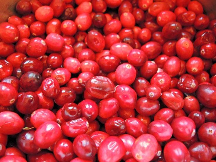 Man Fuel - Food Blog - Fresh Cranberries