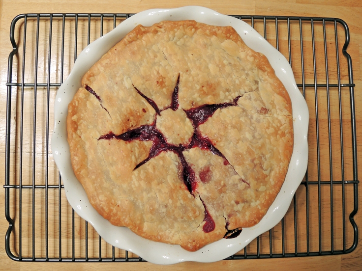 Man Fuel - Food Blog - Whole Cranberry Pie