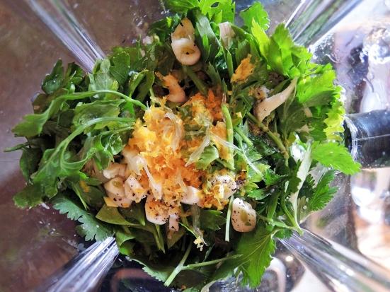 Man Fuel - Food Blog - Cilantro Pesto Ingredients