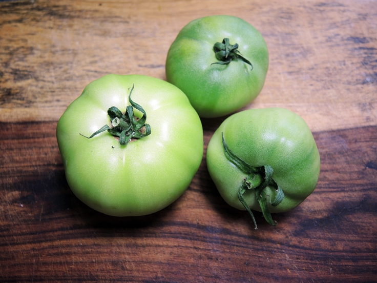 Man Fuel Food Blog - Green Tomatoes
