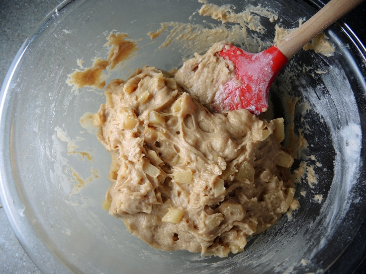 Man Fuel Food Blog - Apple Cider Doughnut Batter