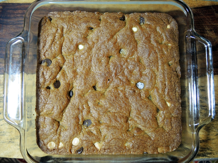 Man Fuel Food Blog - Blondies Recipe - Fully Baked