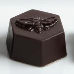 Man Fuel Food Blog - Gather Chocolate - Honey Truffle