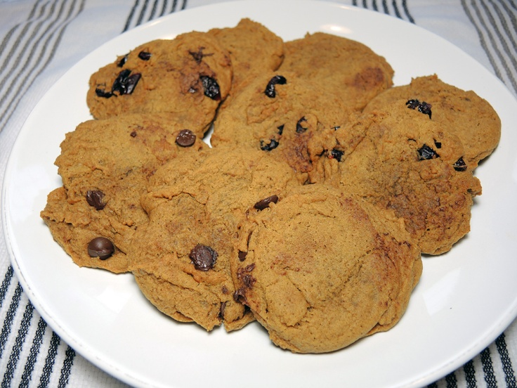 man-fuel-food-blog-pumpkin-spice-cookies-recipe-with-chocolate-chips-and-cranberries