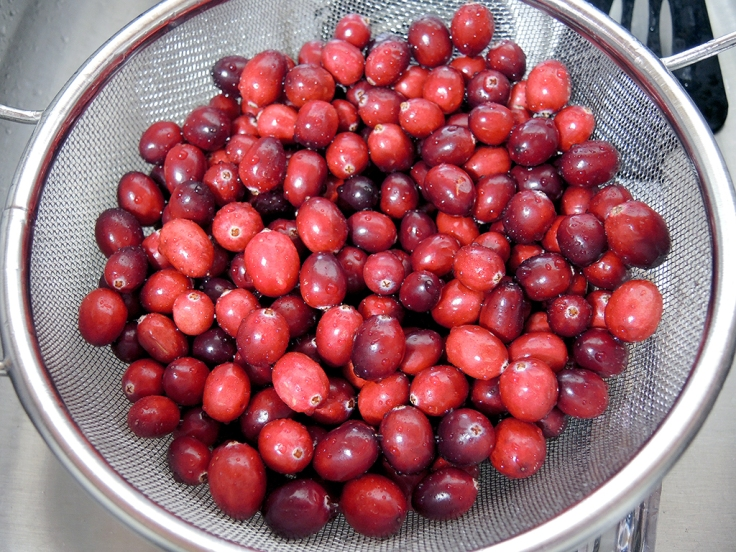 man-fuel-food-blog-cranberry-chutney-fresh-cranberries