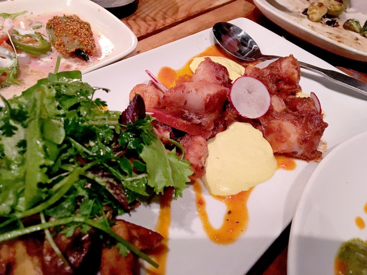 Man Fuel Food Blog - Red Fin Crudo - Providence, RI - Spanish Octopus