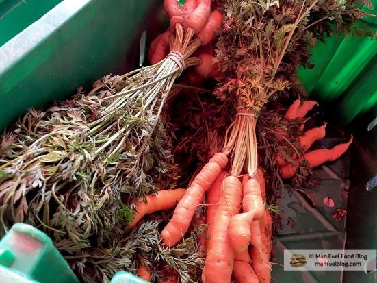 Man Fuel Food Blog - Brookwood Community Farm CSA - Carrots