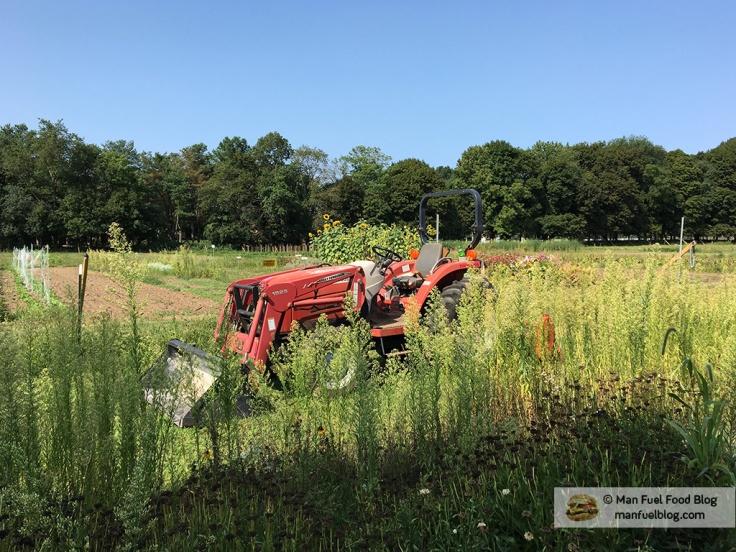 Man Fuel Food Blog - Brookwood Community Farm CSA - Tractor